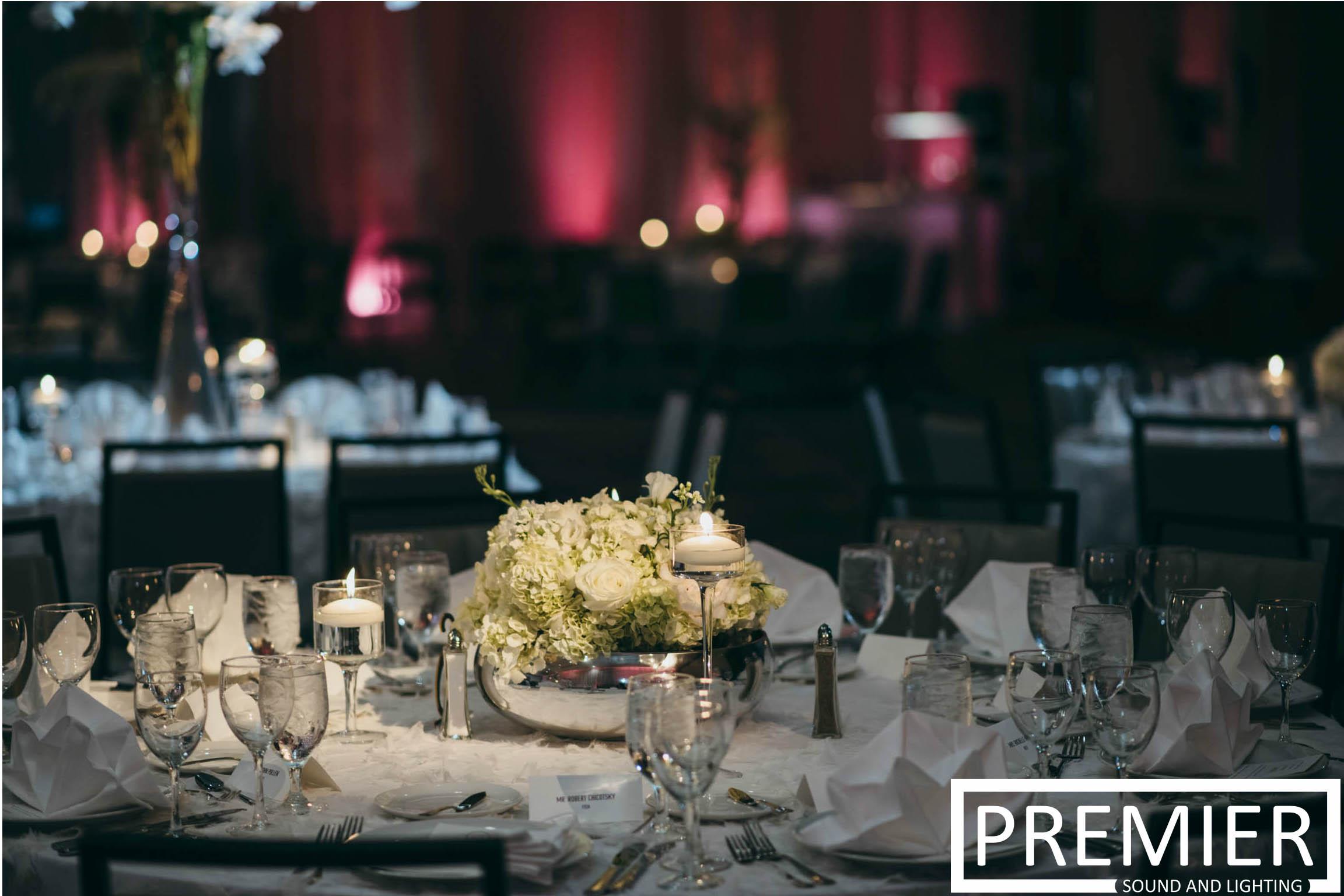 Premier Sound And Lighting Houston Wedding 9